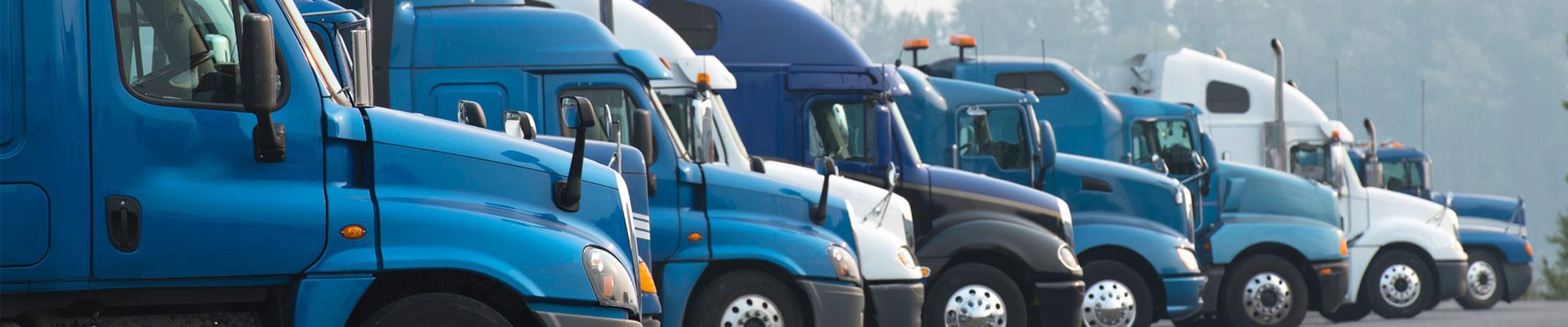 Transportation & Logistics Law